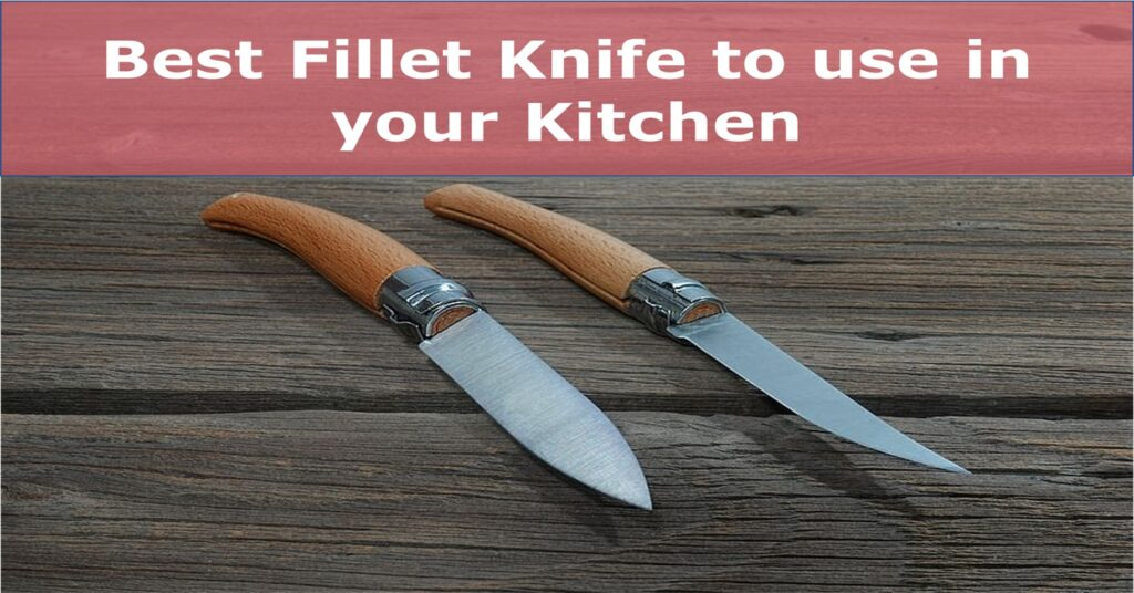 10 Best Fillet Knife Reviews with detailed Buyer's Guide